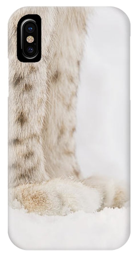 Close-up IPhone X Case featuring the photograph Lynx Feet by Gry Thunes