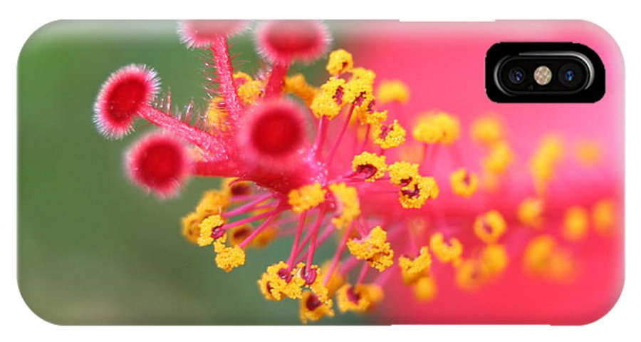 Hibiscus IPhone X Case featuring the photograph Macro Close Up Of Hibiscus Pollen by Taiche Acrylic Art
