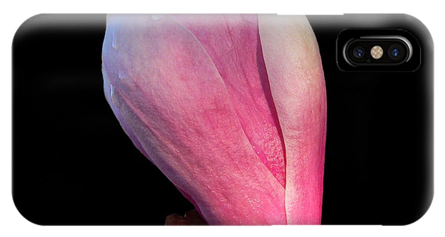 Magnolia IPhone X Case featuring the photograph Maggie by Doug Norkum