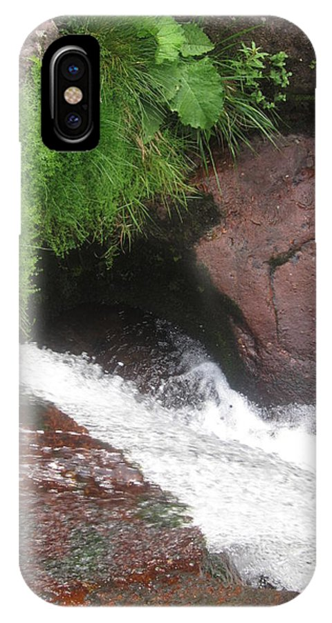 Nature IPhone X Case featuring the photograph Magic Knot by Sonja Stankovic
