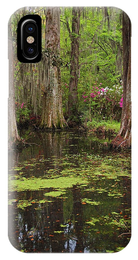 Magnolia Plantation Gardens IPhone Case featuring the photograph Magnolia Plantation Gardens Spring Series I by Suzanne Gaff