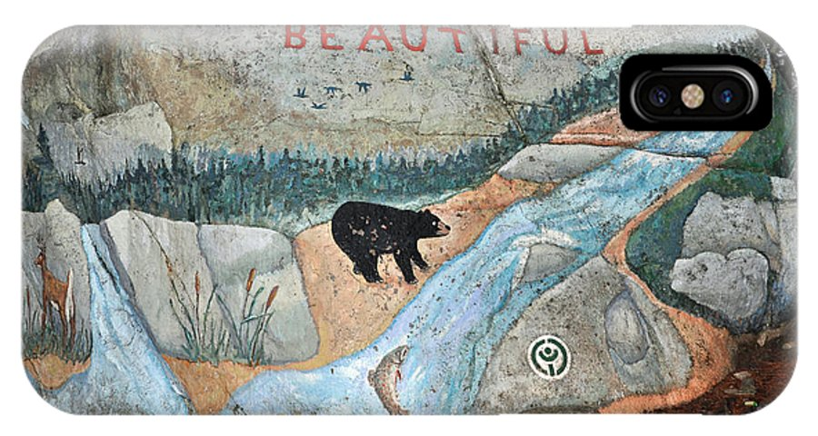 Baxter State Park IPhone X Case featuring the photograph Maine Rock Painting by Glenn Gordon