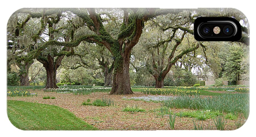 Live Oak IPhone X Case featuring the photograph Majestic Live Oaks In Spring by Suzanne Gaff