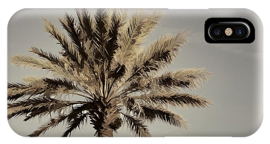 Palm Tree Florida Majestic IPhone X Case featuring the photograph Majestic Palm by Alice Gipson