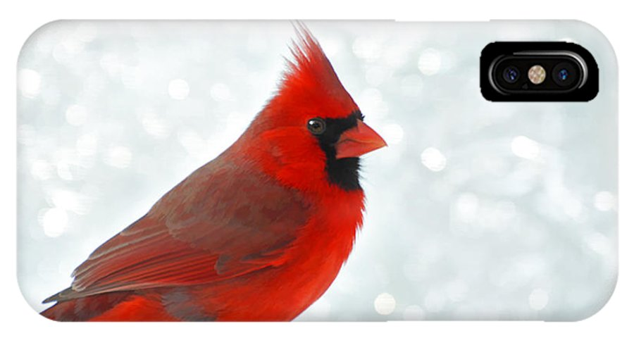 Cardinal IPhone X Case featuring the photograph Male Cardinal In The Snow - Digital Paint by Debbie Portwood