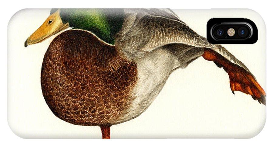 Duck IPhone X Case featuring the painting Mallard Ballet by Pat Erickson