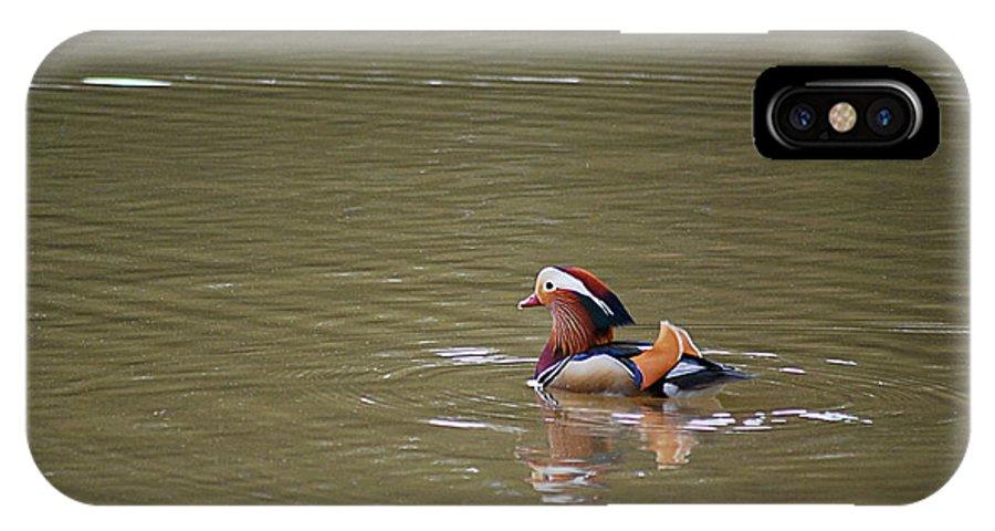 Mandarin IPhone X Case featuring the photograph Mandarin Duck 20130507_47 by Tina Hopkins