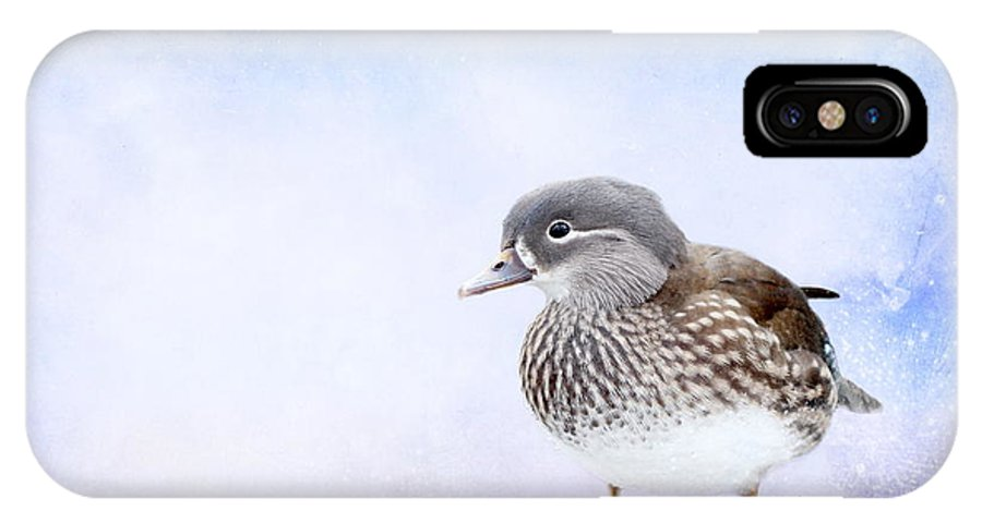 Mandarin Duck IPhone X Case featuring the photograph Mandarin Duck by Heike Hultsch
