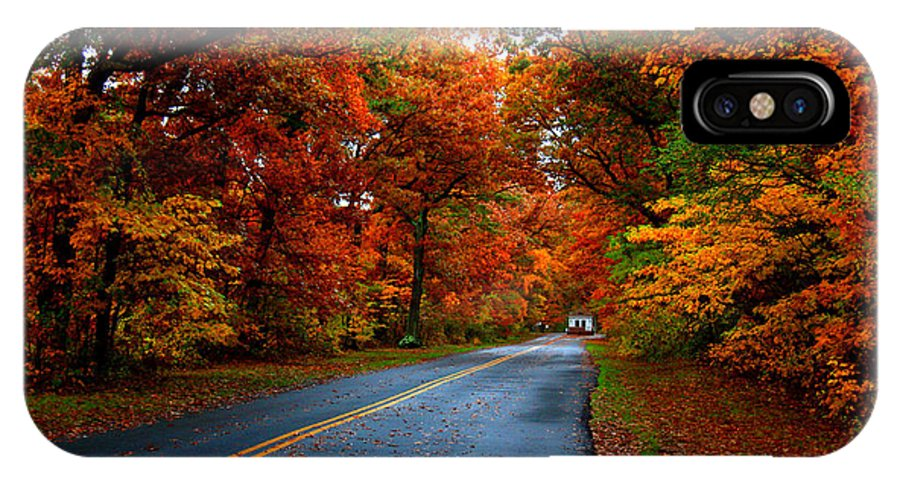 Trees IPhone X Case featuring the photograph Maple Road by Valerie Fuqua