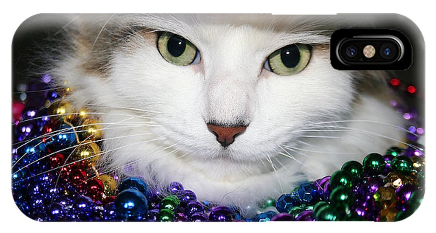 Cat IPhone X Case featuring the photograph Mardi Gras Kitty by Rhonda Burger
