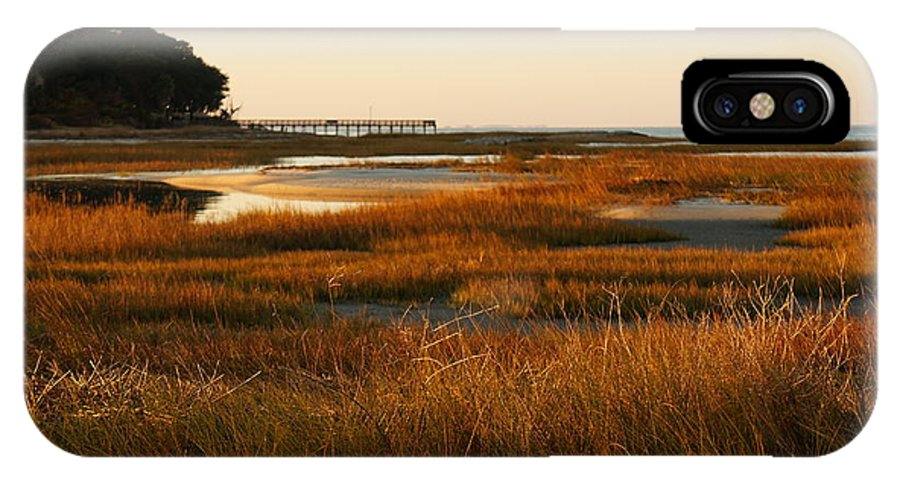 Marsh Grass IPhone X Case featuring the photograph Marsh Grass Autumn by Jacqueline Friel