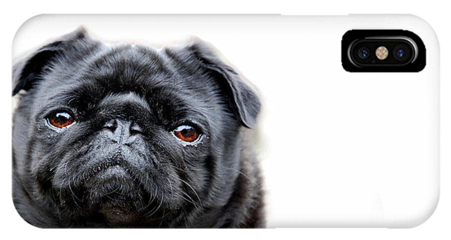 Pug IPhone X Case featuring the photograph Martha Pug by Mark Rogan