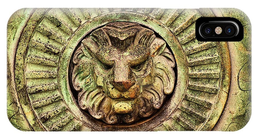 Lion IPhone X Case featuring the photograph Mausoleum Lion by Chris Thaxter