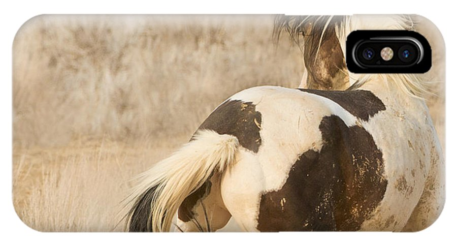Horse IPhone X Case featuring the photograph Medicine Hat Turns by Carol Walker