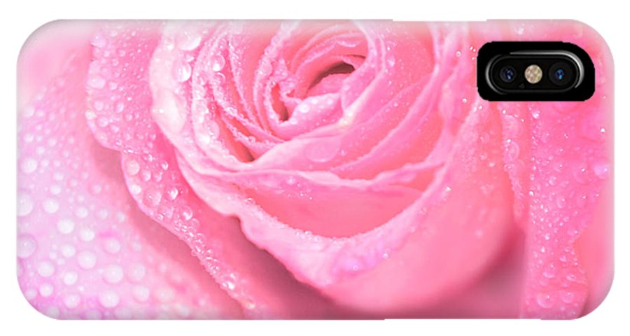 Pink Rose IPhone X Case featuring the photograph Melting In Pink by Olga Hamilton
