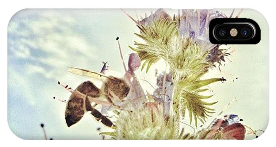 Summer IPhone X Case featuring the photograph #mgmarts #flower #spring #summer #bee by Marianna Mills