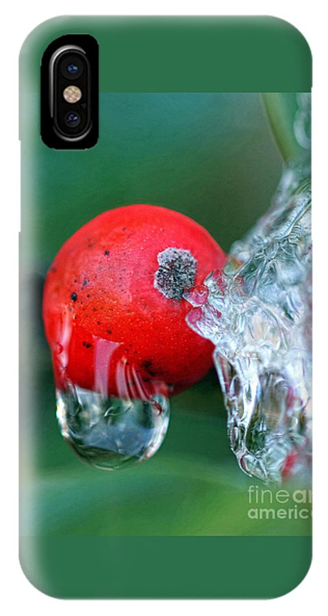 Winter IPhone X Case featuring the photograph Midwinter Meltdown by Geoff Crego