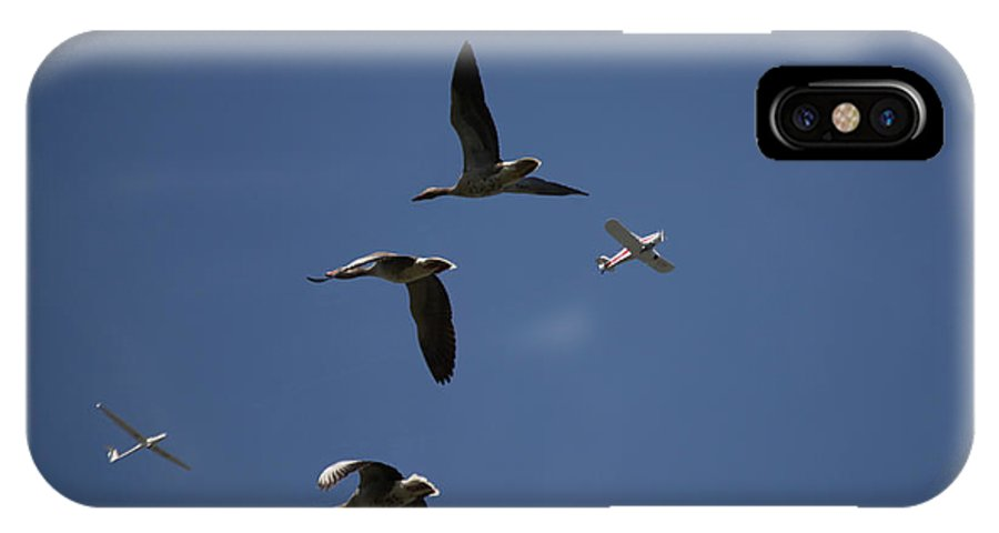Bird IPhone X Case featuring the photograph Migrating by Kent Mathiesen