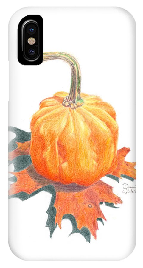 Pumpkin IPhone X Case featuring the drawing Miniature Pumpkin On Oak Leaf Still Life by Dominic White