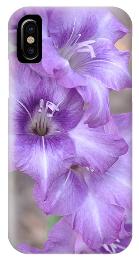Gladiolus IPhone X Case featuring the photograph Misty Gladiolas by Deborah Good