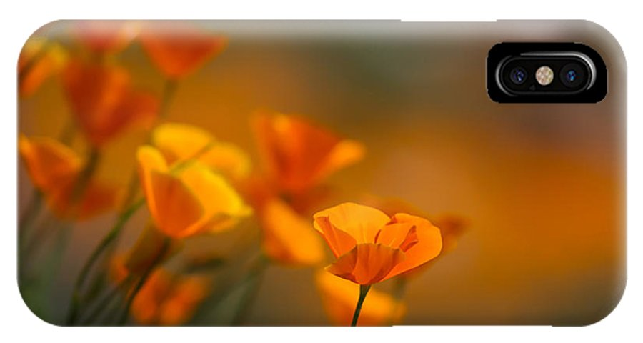 California Poppies IPhone X Case featuring the photograph Misty Poppies by Roger Mullenhour