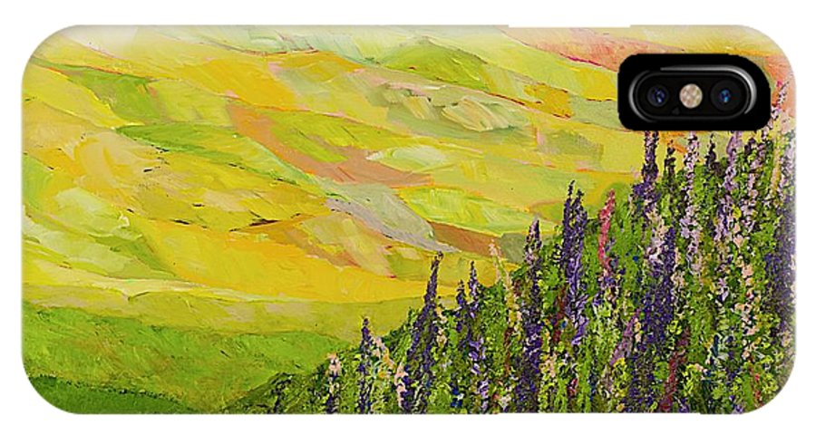 Landscape IPhone X Case featuring the painting Misty Valley by Allan P Friedlander