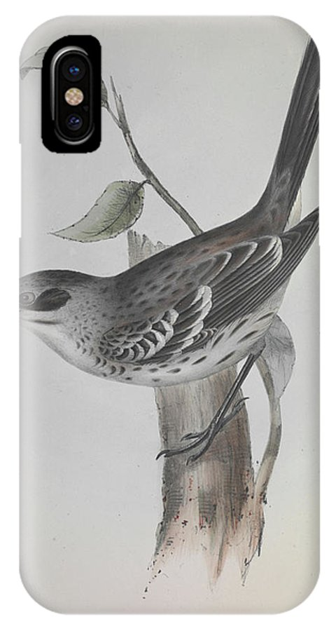 Bird IPhone X Case featuring the photograph Mockingbird by Natural History Museum, London/science Photo Library