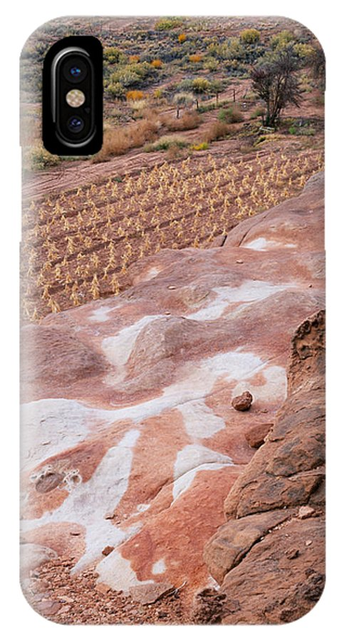 Arizona IPhone X Case featuring the photograph Moenkopi Corn by Tom Daniel