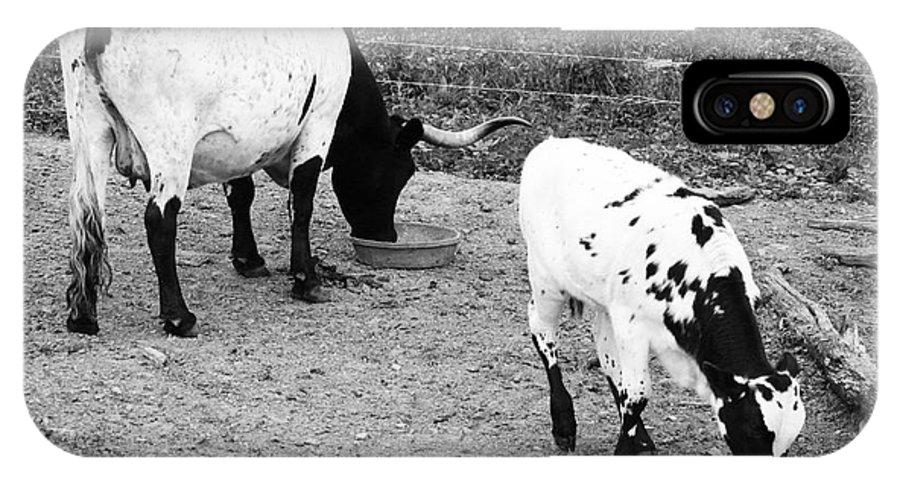 Black N White IPhone X Case featuring the photograph Mom N Calf by Ann Butler