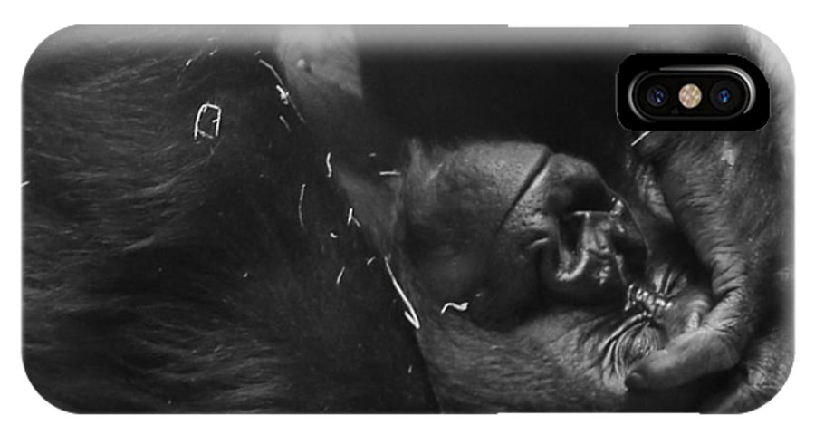 Gorilla IPhone X Case featuring the photograph Mondays by Kevin Buffington