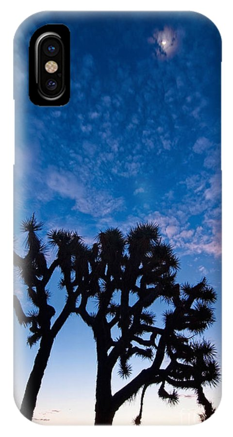Yucca Brevifolia IPhone X Case featuring the photograph Moon Over Joshua - Joshua Trees During Sunrise In Joshua Tree National Park. by Jamie Pham