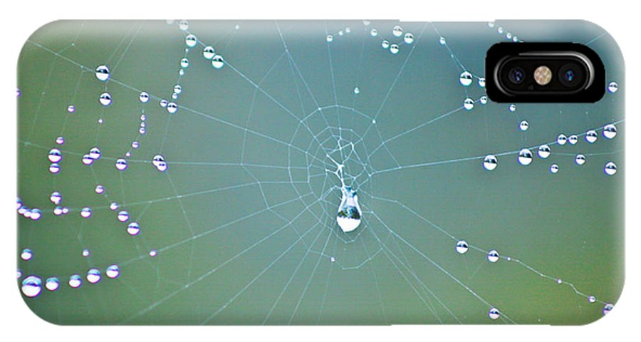 Spiderweb IPhone X Case featuring the photograph Morning Dew At Wai-o-tapu by Catherine Snowden