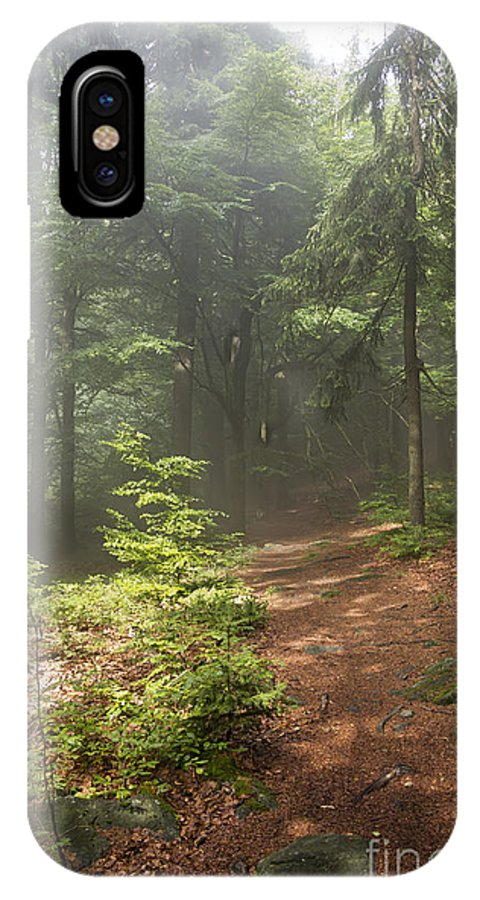Atmosphere IPhone X Case featuring the photograph Morning In The Forest by Michal Boubin