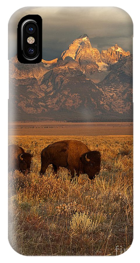 Grand Teton IPhone X Case featuring the photograph Morning Travels In Grand Teton by Sandra Bronstein