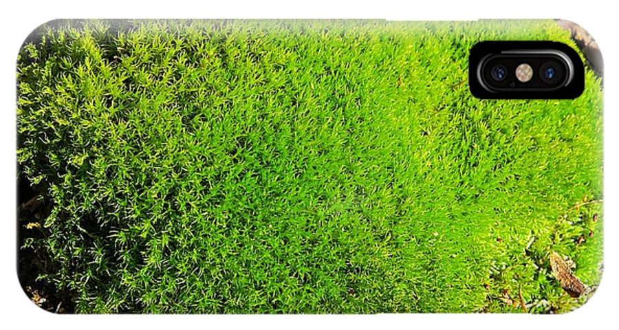 Moss IPhone X Case featuring the photograph Moss by MTBobbins Photography