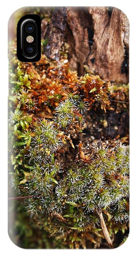Moss IPhone X Case featuring the photograph Moss On A Tree by Michaela Perryman