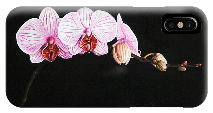 Moth Orchid IPhone X Case featuring the drawing Moth Orchid by Marna Edwards Flavell