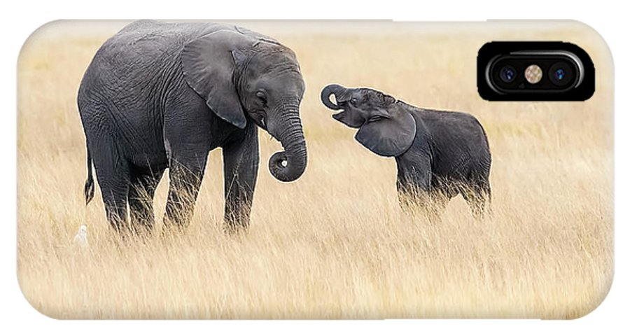Kenya IPhone X Case featuring the photograph Mother And Baby Elephants by Hua Zhu