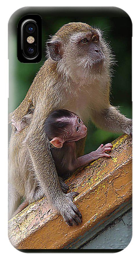 Monkeys IPhone X Case featuring the photograph Mother Monkey And Her Baby by SilkAndPaper Art