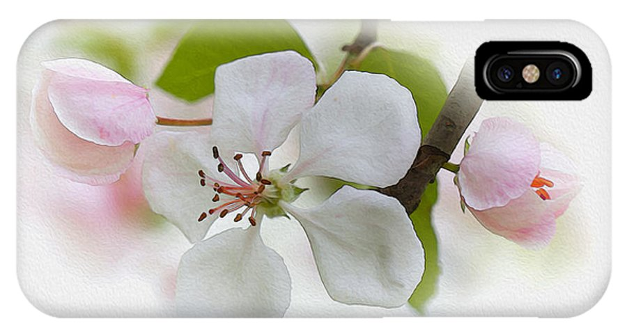 Ron Jones IPhone X Case featuring the photograph Mother's Day by Ron Jones