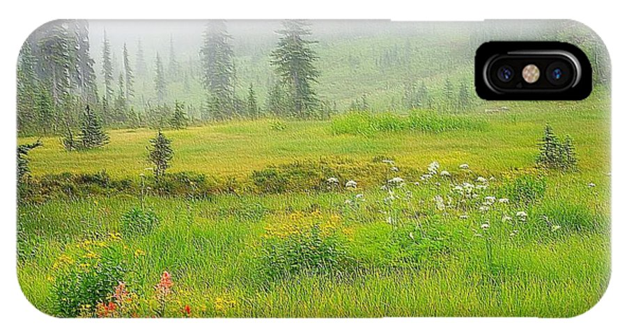 Meadows In The Sky Parkway IPhone X Case featuring the photograph Mount Revelstoke National Park British Columbia Canada by Maciek Froncisz