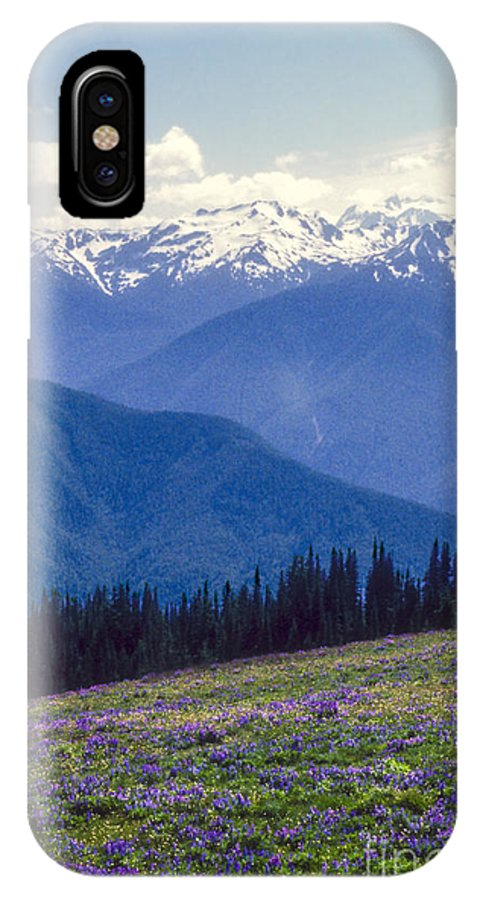 Olympic National Park Washington Parks Tree Trees Forest Forests Nature Landscape Landscapes Mountain Mountains Peak Peaks Snow Flower Flowers Wildflower Wildflowers IPhone X Case featuring the photograph Mountain Color And Snow by Bob Phillips