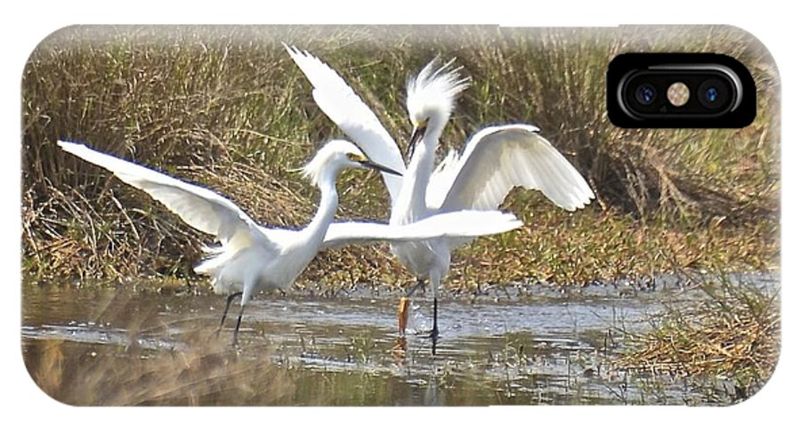 Egret IPhone X / XS Case featuring the photograph Move It Buster by Carol Bradley