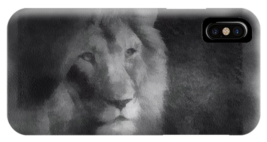 Wildlife IPhone X Case featuring the photograph Mr Lion Photo Art 01 by Thomas Woolworth