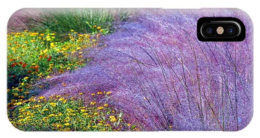 Gardens IPhone X Case featuring the photograph Muhly Grass In The Morning by Lydia Holly