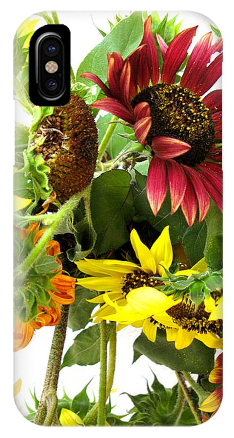 Sunflowers IPhone X Case featuring the photograph Multi-color Sunflowers by Valerie Brown