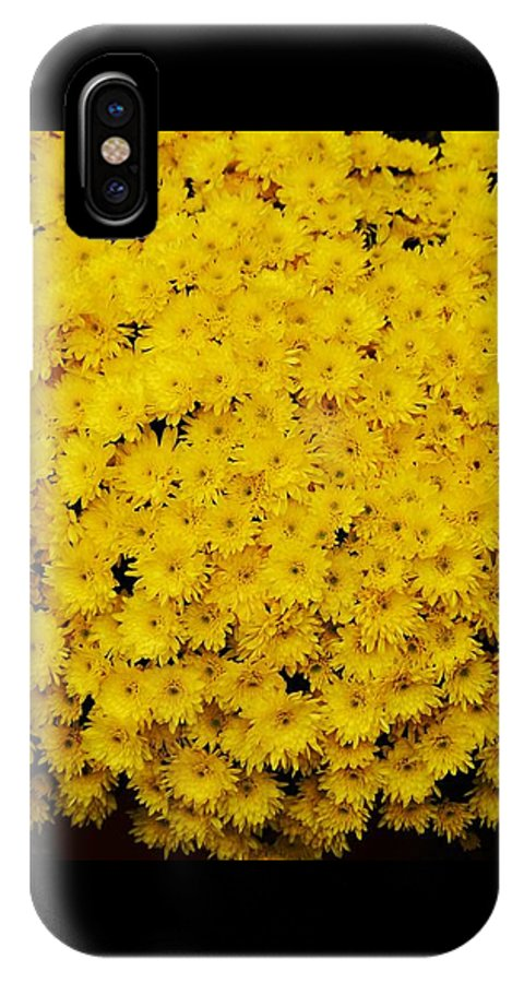 Floral Photography Fall Photography Yellow Mums Photography Stock Shot Photography Bouquet Photography Greeting Card Thanksgiving Card Metal Frame Suggested Canvas Print Suitable Phone Case Art Throw Pillow Art Duvet Cover Art Tote Bag Art Shower Curtain Art T Shirt Art IPhone X Case featuring the photograph Mums The Word by Marcus Dagan