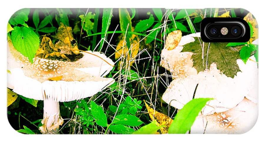 Mushrooms IPhone X Case featuring the photograph Mushroom Abstract # 3 by Melinda Pettery