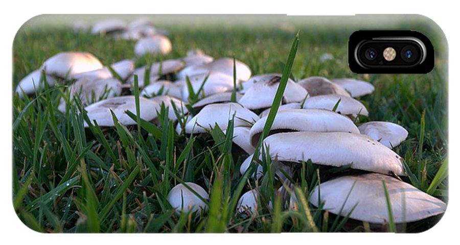Grass IPhone X Case featuring the photograph Mushrooms by Bradley Bennett