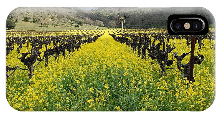 Mustard IPhone X Case featuring the photograph Mustard In The Vineyard by Bradley Bennett